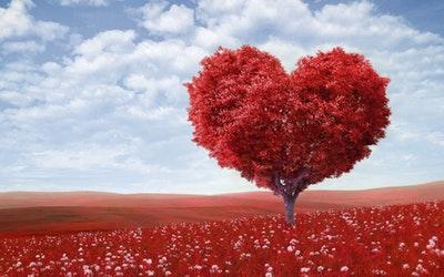 测试你在爱情中扮演的角色